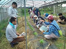 ベジモ有機農業スクール