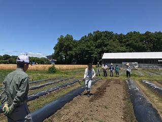 全国3ヶ所にてベジモ有機農業スクールが開講しました。(愛知、広島、栃木)2018年度