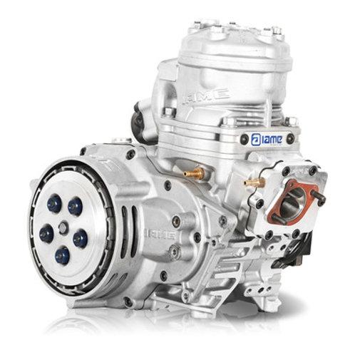"""IAME Skusa Shifter Engine""""SSE"""""""