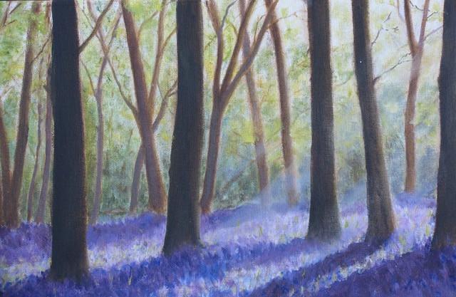 Blue Bell Wood.