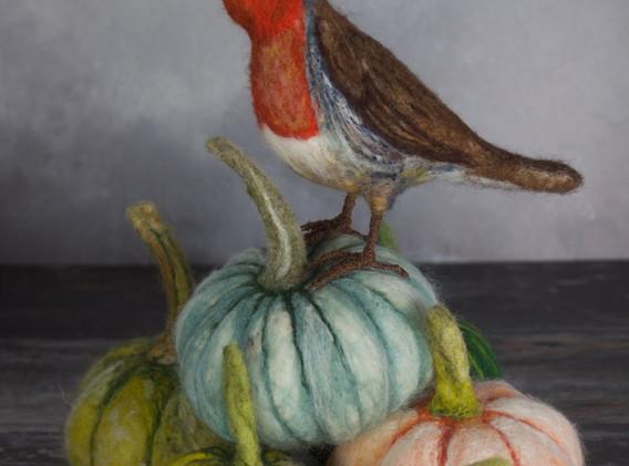 Robin on Pumpkins.