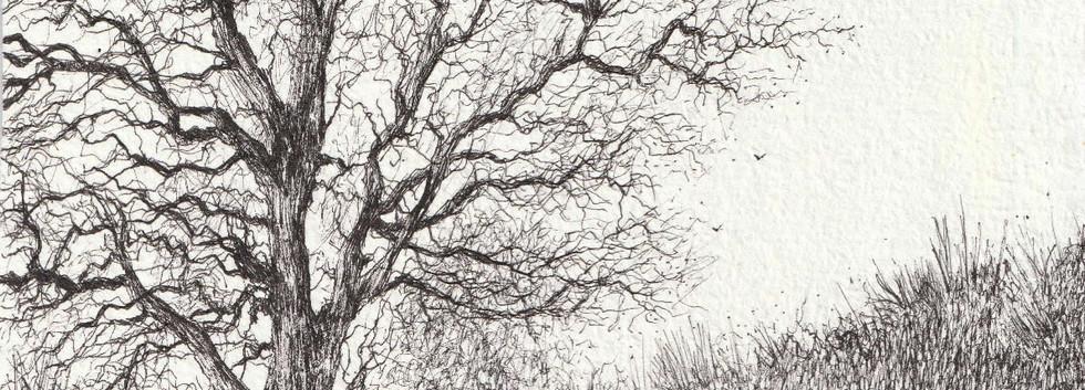 'Snow drifts on Nether Lane, Hazlewood'