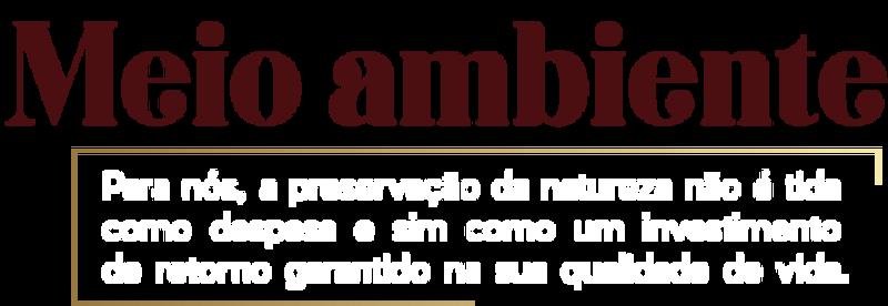 despesaAtivo 10.png