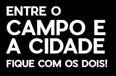entreacidadeeocampo3.png