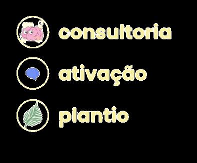 consultoria e ativação socioambiental.png