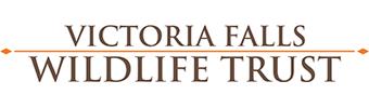 vfwt logo.png