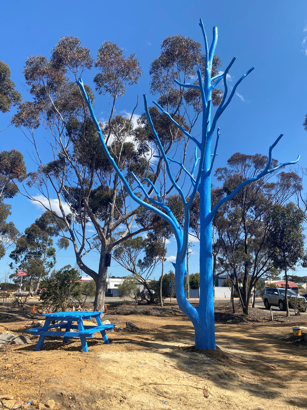 Blue Tree and Bench.jpg