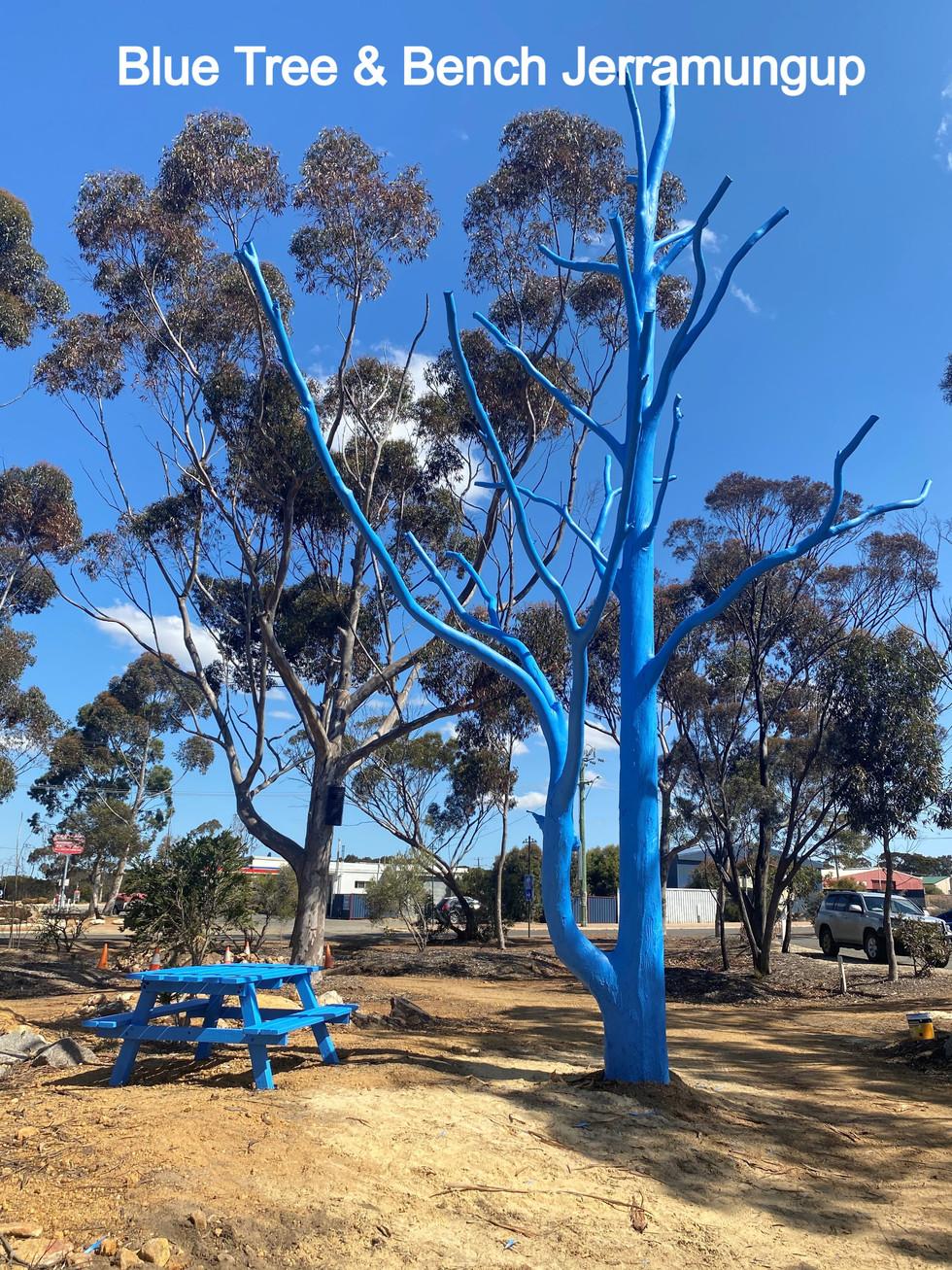 jerramungup Blue Tree and Bench