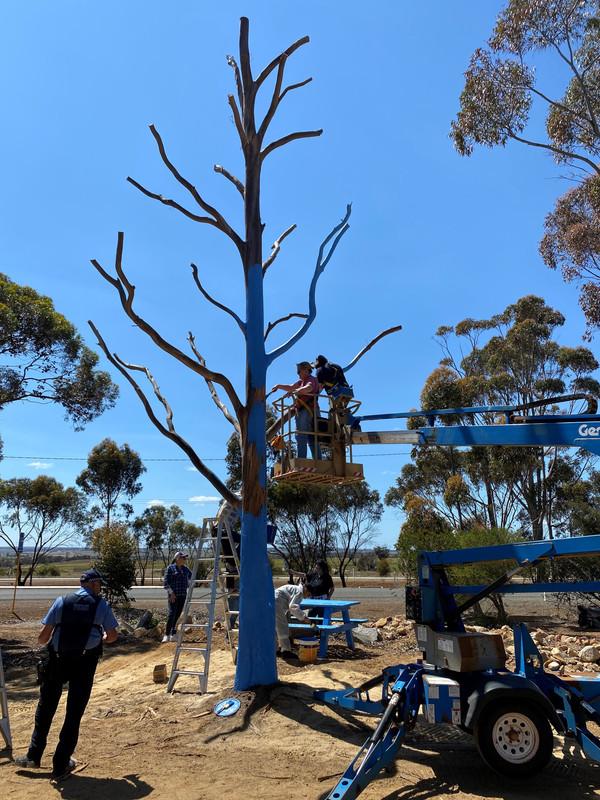 Jerramungup Blue Tree