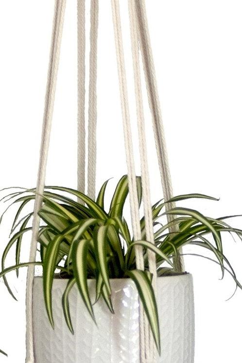 Macramé Plant Hangers (6 Count)