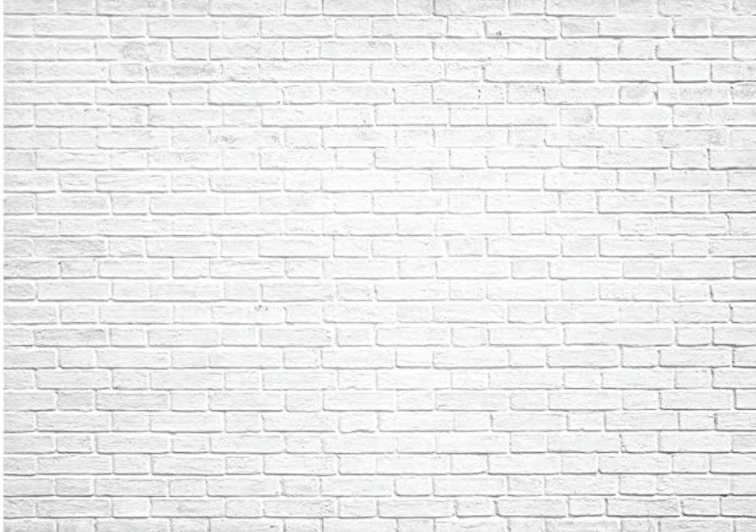 Brique blanche 10X6,5