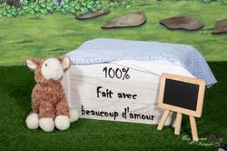 Vert-Mouton
