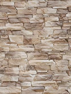 Mur Brique 5x7