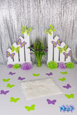 Clôture + Papillon vert et mauve