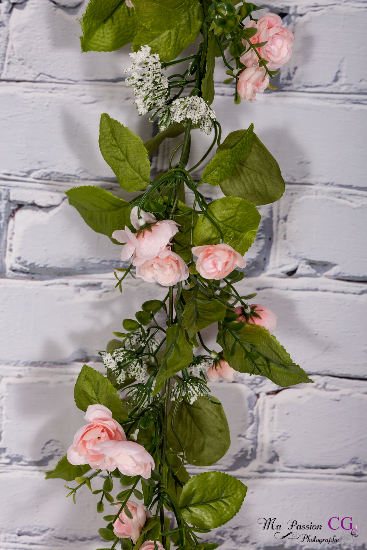 Rose pâle