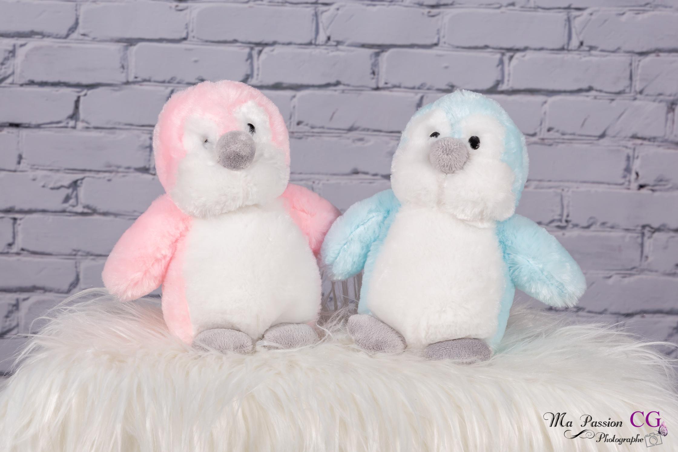 Pingouin / rose & bleu