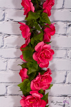 Grosse fleur Rose