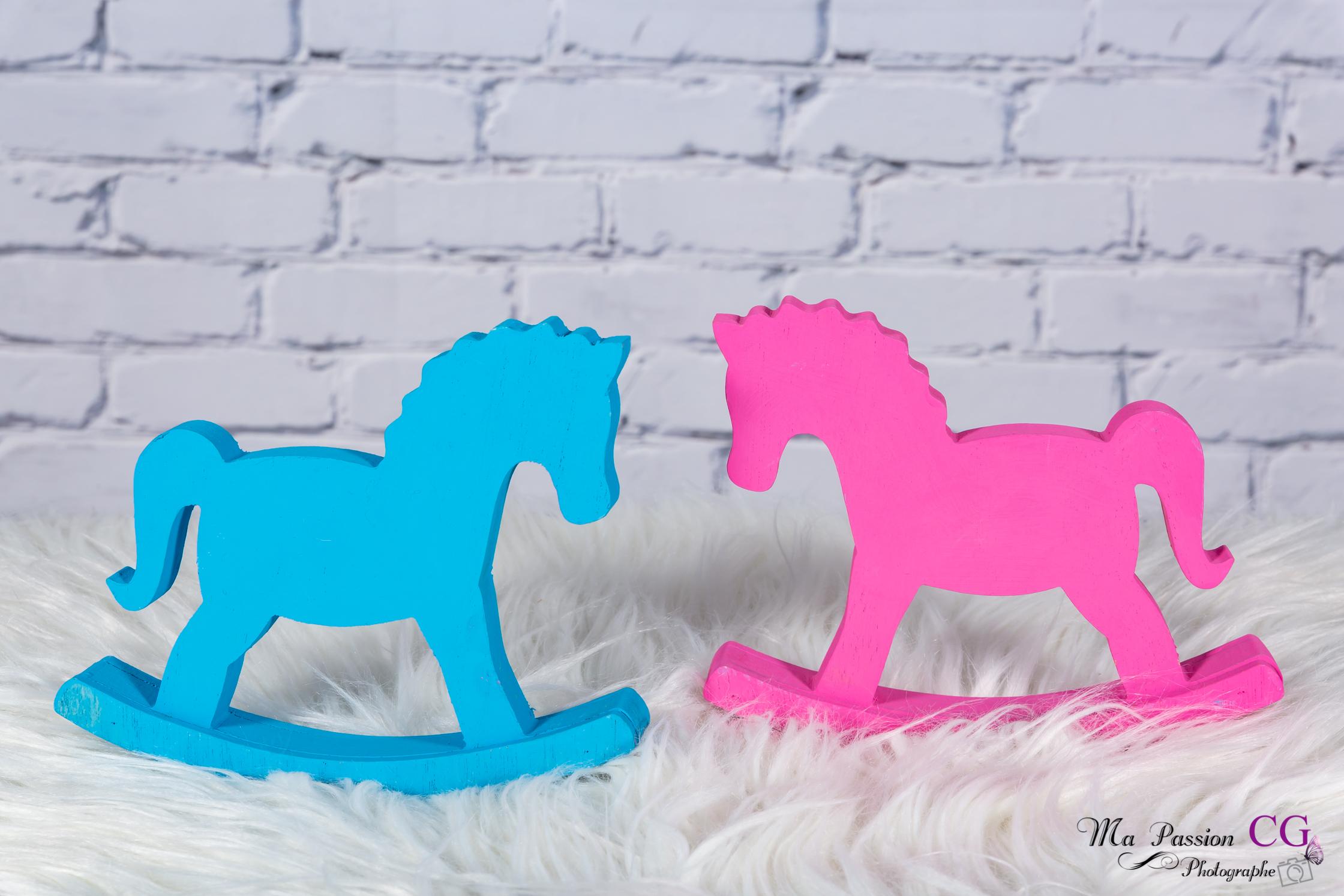 Cheval bleu / rose