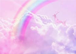 Arc-en-ciel mauve/rose 5X7