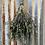 Thumbnail: Calming Eucalyptus + Lavender Shower Bouquet