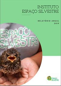 Demonstração_Financeira-2019.PNG