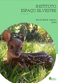 Capa Relatório 2020.png