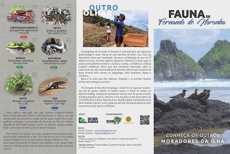 Projeto Aves de Noronha - MiniGuiaExtern