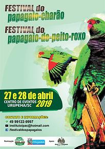 festival do papagaio de peito roxo e cha