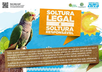 cartaz soltura legal.jpg