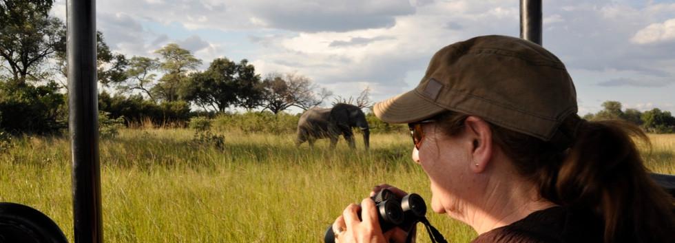 Sherry on Safari