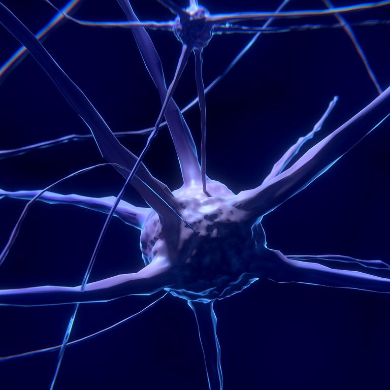 Zoom talk: Neuromorphic Nanotechnology