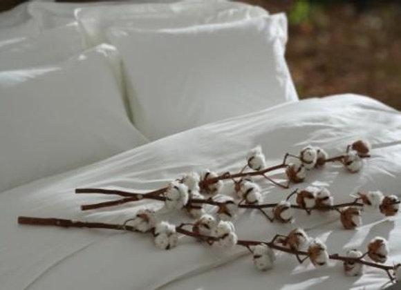 100% Egyptian Cotton Hotel Sheets
