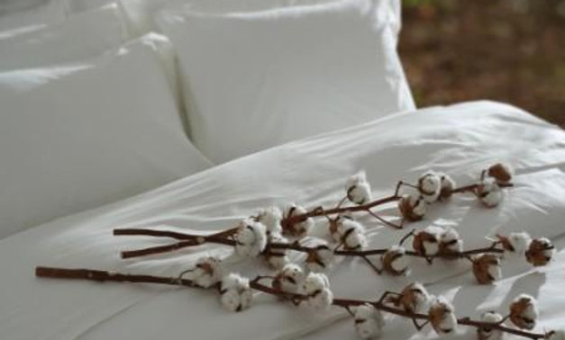 100% Egyptian Cotton Hotel Sheets