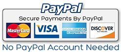 paypal-payments3.png