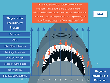 Twenty 20 Talent e-learning: Recruitment Processes Timeline