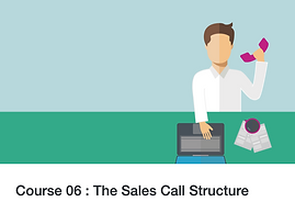 Twenty 20 Talent e-learning: The Sales Call Structure