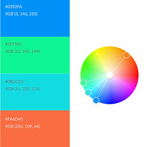 Fitted colour palette.jpeg