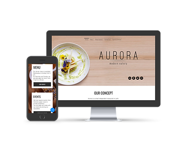 Aurora project image.png