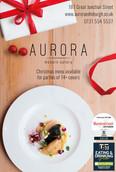 Aurora Christmas Ad