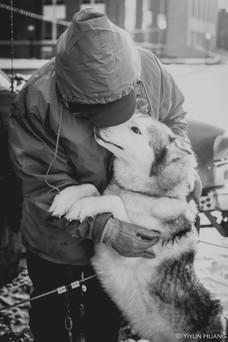 Husky loving on owner during winter fest at University of Rochester