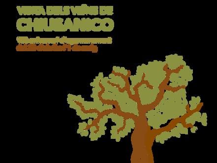 Programa d'actes: 15è aniversari de l'agermanament amb Chiusanico