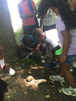 Save-A-Seed Fit and Fun Summer Camp: Belle Isle