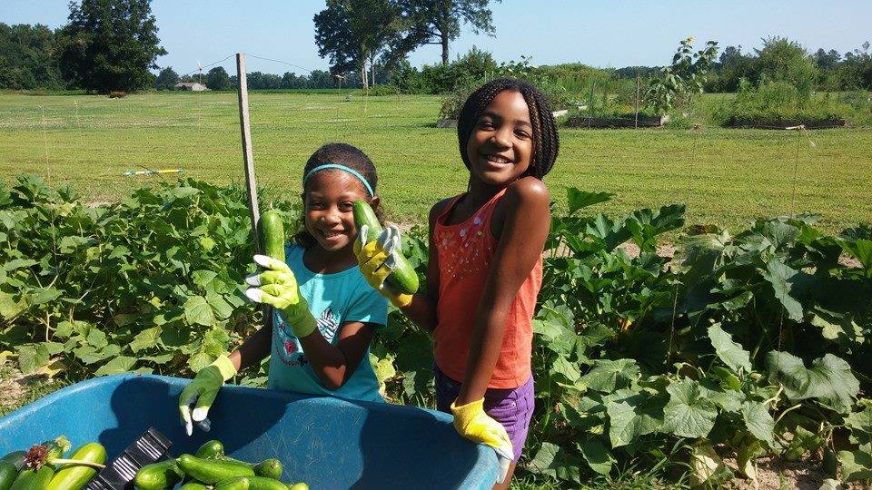 Save-A-Seed Youth Volunteer Day