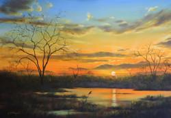 Bushveld sunset