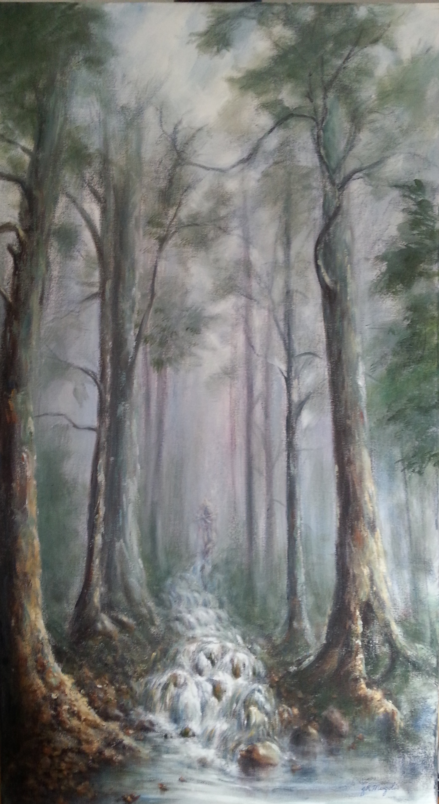Shani's forest