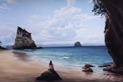 NZ Cove