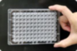 technology_nitrocellulose_based_coating_