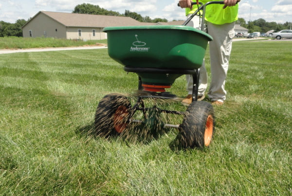 Core Aeration And Overseeding