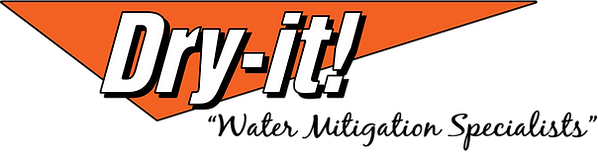 Dry-It! Logo (1).png