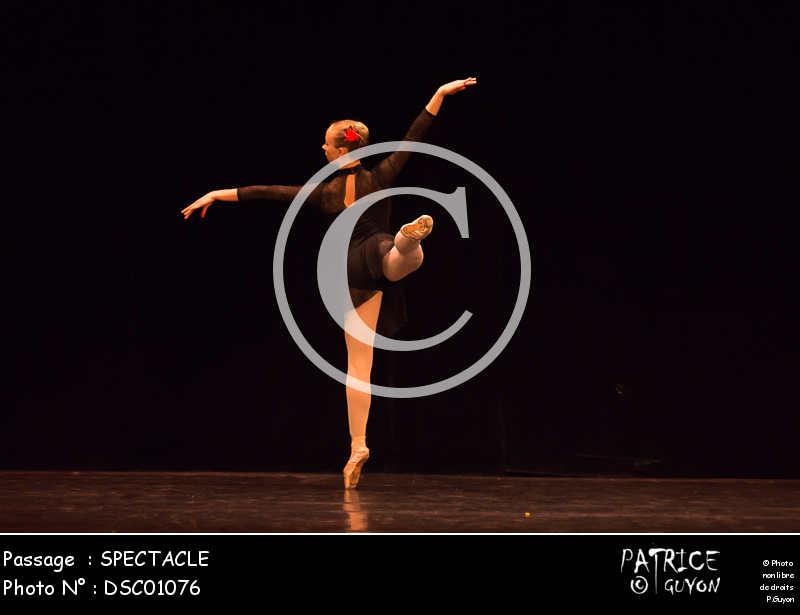 SPECTACLE-DSC01076